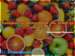 patience is bitter but its fruit is sweet fruit quotes 2 fruit