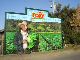 john cerney projects foxy mural 2011 2012
