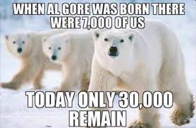 Polar Bear Meme - love the meme but not the science
