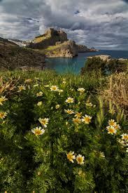 rhodes travel guide book 222 best rhodes island images on pinterest rhode island rhodes