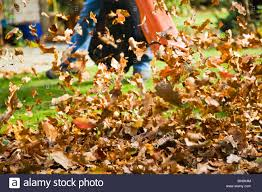 a man using a combination garden vac and leaf blower blowing