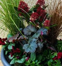Winter Container Garden Ideas Winter Container Garden Ideas Fall Container Garden Ideas Fall