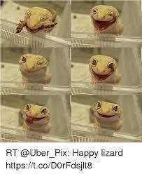 Lizard Meme - 25 best memes about happy lizard happy lizard memes