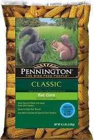 amazon com pennington ear corn on cob squirrel food 6 5 pound