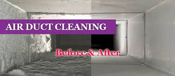 contact us houston carpet cleaning