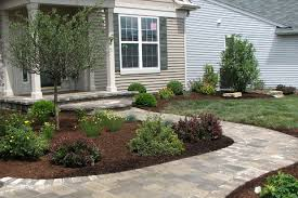ornamental trees and plants plant types care arborists