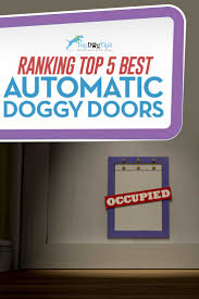 2017 top 5 best automatic dog door for pets safe u0026 secure