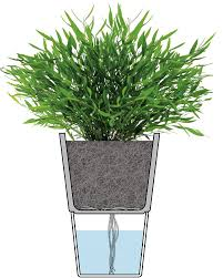 Self Water Pot Amazon Com Eva Solo Self Watering Herb Pot 13 Cm Diameter Chalk