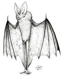 batman car drawing inktober 7 humanoid bat by pablo riquelmerivera on deviantart