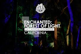 enchanted forest of light tickets visiting the enchanted forest of light in los angeles califoreigners