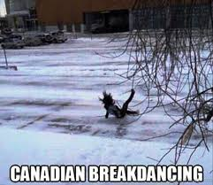 Canada Snow Meme - 80 super cool winter memes
