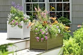 garden trough planter u2013 exhort me