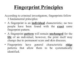 fingerprint patterns worksheet free worksheets library download