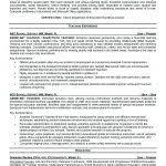 Resume For Computer Teacher Resume Curriculum Vitae Samples Teaching Position Teacher Resume