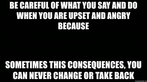 What You Say Meme - be careful of what you say and do when you are upset and angry