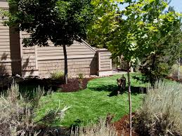 Alternatives To Grass In Backyard by Synlawn Artificial Grass Artificial Turf Bend Oregon
