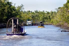 fan boat tours miami dominque jolley