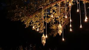 decorative antique edison style filament light bulbs hanging in