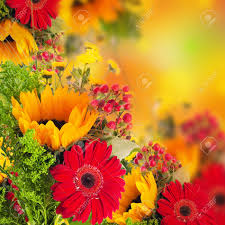 autumn flowers bouquet from gerber and sunflowers stock photo