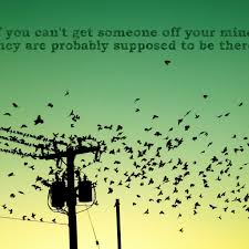 birds quotes sayings images page 31