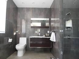 Houzz Modern Bathrooms 465 Best Home Design Images On Pinterest Small Bathrooms Bath