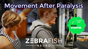 oakland manual therapy movement after paralysis pilates for spinal cord injury by
