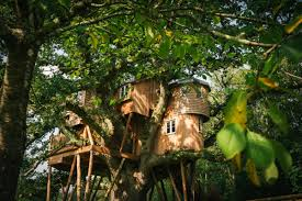Best Treehouse 10 Best Treehouses