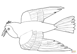 red bird red bird coloring free printable