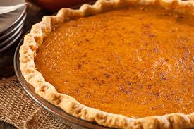 10 thanksgiving foods your or cat really should not eat care2