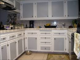 Blue Painted Kitchen Cabinets Kitchen Kitchen Cabinets And Flooring Combinations Best Color