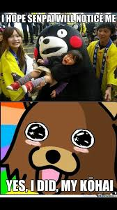 Senpai Meme - 14 best notice me senpai images on pinterest hilarious hilarious
