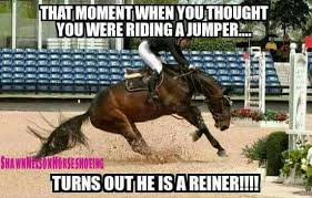 Horse Riding Meme - pin by arianna bloom on horses pinterest horse equestrian