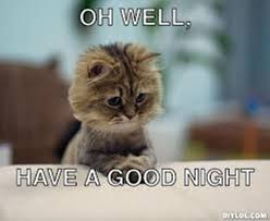 Goodnite Meme - oh well have a good night cat meme ilove messages