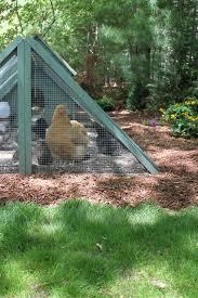 coop tours tilly u0027s nest