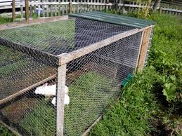Homemade Rabbit Cage Guest Post The Rabbit Tractor U2022 New Life On A Homestead