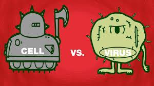 cell vs virus a battle for health shannon stiles youtube