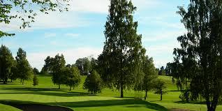 commercial tree care service portland oregon tree shrub care