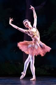 306 best ballet images on pinterest american ballet theatre