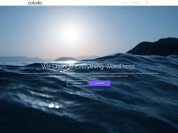 Popular     Free WordPress Themes Shapely