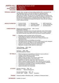 business resume templates business development manager cv template