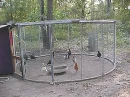 best 25 easy chicken coop ideas on pinterest pallet coop yard