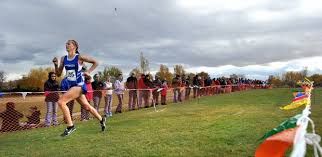 bozeman dynasty continues at state cross country townsend u0027s