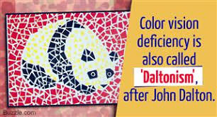 Was John Dalton Color Blind The Facts About Color Blindness Genetics Will Take You By Surprise