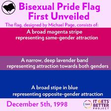Pride Flag Colors Bisexual Pride Flag Blogging Bi Day Dance By Night