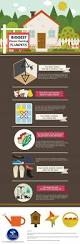 tips to avoid the biggest house cleaning blunders infographic