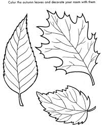 leaf coloring pages bestofcoloring com