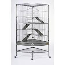 Ferret Hutches And Runs Ferret Small Pet Housing You U0027ll Love Wayfair
