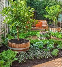 Fruit Garden Ideas Update Fruit Garden Design Ideas Pictures Best Garden Wallpaper