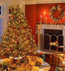 how to make your new house feel like home for the holidays bekins
