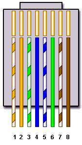 standard cat5 wiring diagram wiring diagram and schematic design